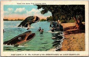 PORT KENT, New York Postcard Lake Champlain Fishing Exaggeration / 1925 Cancel