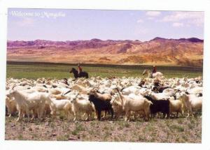 Mongolia,Asia,80-90s,Duri ng Summer,Nomadic Children Return Home & Enjoy The ...