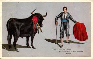 Mexico -  Matador and Bull