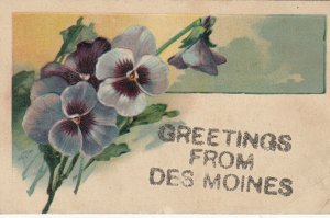 DES MOINES , Iowa , 1900-10s ; Pansy Flowers Greeting