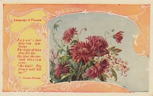 Language of Flowers , Japan's Fair Flowers , 1911