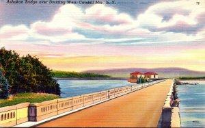 New York Catskills Ashokan Bridge Over Dividing Weir