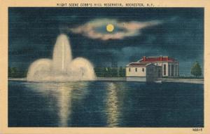 Night Scene at Cobb's Hill Reservoir, Rochester, New York - Linen