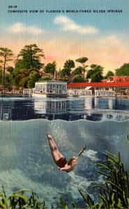 Florida Silver Springs Composite View
