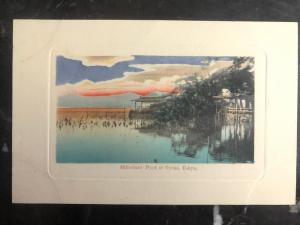 Mint Japan Picture Postcard PPC Shinobazu Pond At Uyeno Tokyo