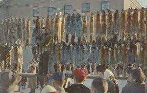 ANCHORAGE , Alaska , 40-50s ; Annual Fur Auction