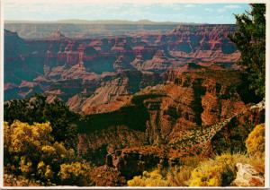Grand Canyon AZ Arizona USA North Rim Point Sublime Unused Postcard D55