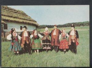 Poland Postcard - Folklor Ziemi Sadeckiej   T8752