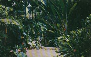 Moos Memorial Miami Florida