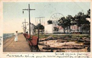LPS57 Pine Beach Virginia Amusement Park and Boardwalk Postcard