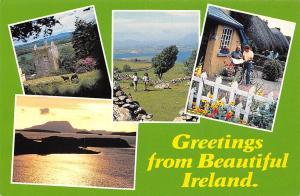 Greetings from Beautiful Ireland, Horses Field Lake Panorama Houses Bicycle