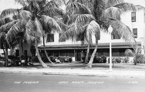 Lake Worth FL The Florida Palm Trees RPPC Postcard