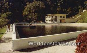 Penang Malaysia, Malaya Waterfall Reservoir, Botanic Garden  Waterfall Reserv...