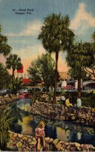 Florida Tampa Plant Park 1953 Curteich