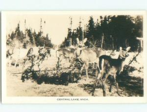Pre-1950 rppc DEER Central Lake By Bellaire Charlevoix & Traverse City MI i5928