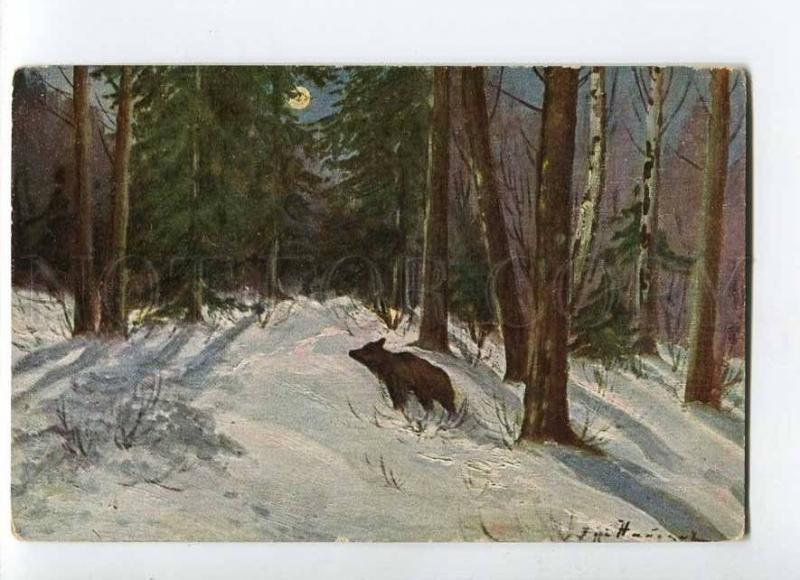 270091 RUSSIA NAYDEN HUNTING moon winter forest #59 Bear old