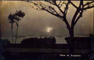 singapore, Sunset, Palm Trees (1920s) RPPC