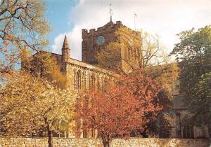 Hexham Abbey Flowers Trees