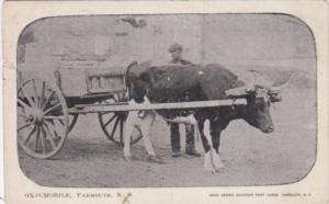 Canada Nova Scotia Yarmouth Ox-O-Mobile Ox Cart 1905