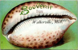 Walkerville Michigan~Souvenir Seashell Greetings~Embossed 1909 Cancel~Postcard