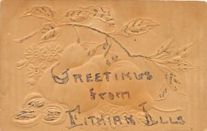F47/ Fithian Illinois Postcard 1911 Greetings from Fithian Glitter