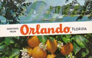 Florida Greetings From Orlando Showing Lake Eola Fountain