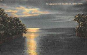Moonlight Over Biscayne Bay Miami, Florida Postcard