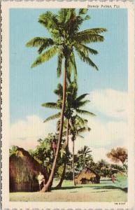 Stately Palms Fiji Huts Palm Trees UNUSED Vintage Linen Postcard D99