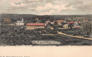 View of Eldred, Sullivan County, New York, Early Hand Colored Postcard, Unused