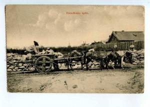 248563 CHINA Harbin bullock-cart Vintage russian postcard