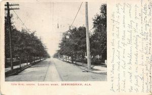 Birmingham Alabama~11th Avenue South Looking West~Homes Both Sides~c1905 B&W
