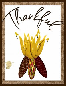 Set of 6 Fine Art Postcard Thankful, Indian Corn, Celebrating Autumn Greetings
