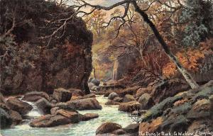 The Dargle Rock Co Wicklow Creek Forest