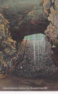 Kentucky Mammoth Cave Historic Entrance Looking Out Curteich
