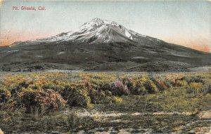 Oakland California 1909 Postcard View of Mt. Shasta