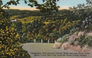 Indiana Nashville Scene In Brown County State Park Curteich