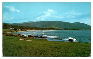 1950s/60s Pebble Beach Golf Course, Monterey Peninsula, CA Postcard *5N14