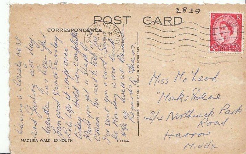 Genealogy Postcard - Family History - McLeod - Harrow - Middlesex  GN491