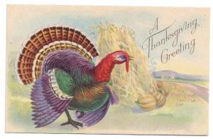 Turkey Haystack Thanksgiving Vintage Postcard Stecher Series 777 C Litho
