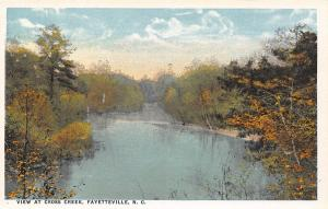 Fayetteville North Carolina~View at Cross Creek~No Mall~c1916 Postcard