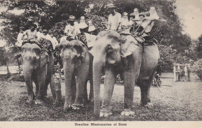 Siam Ursuline Missionaries Riding Elephants Albertype sk4402