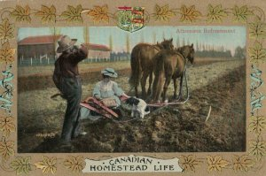Homestead Life , Canada , 1900-10s ; Afternoon Refreshment