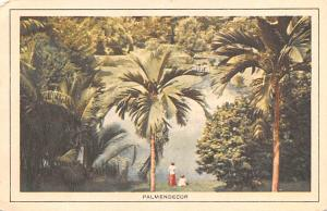 Indonesia, Republik Indonesia Palmendecor  Palmendecor