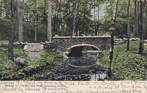 Connecticut Waterbury Bridge At Hamilton Park 1906