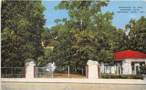 Memphis Tennesse~Overton Park Zoo Entrance~Lion Sculptures from Italy~1940s Pc