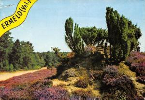 Netherlands Ermelo (Vel.) 1975