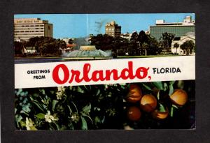 FL Greetings From Orlando Florida Postcard First National Bank Oranges PC