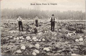 Musk Melon Farm in Oregon OR Agriculture c1908 RPO Postcard F28