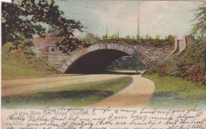 Ohio Cleveland Wade Park Bridge 1907 Rotograph