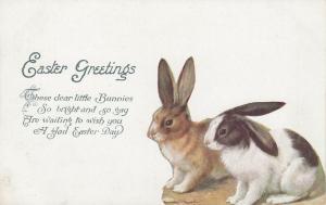 EASTER; 1900-10s; Rabbits, Poem, TUCK # 1025
